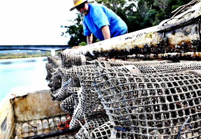 Oyster grower Geoff Lawler is sick of poachers stealing from his leases on the Brunswick, Tweed and Richmond rivers.