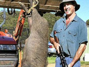 Farmer warns walkers of wild pigs