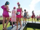 Coffs Harbour's Pink Silks Ladies Race Day has raised a staggering $50,000 for cancer charities.