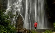 A lone spectator is dwarfed by the impressive 58m Shine Falls near Tutira.