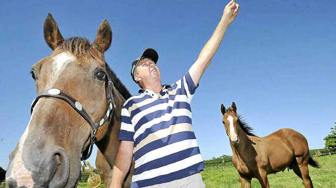 Horse breeder and spelling-farm owner Stephen Butcher is frustrated by the lack of respect by hot air balloon operators who inadvertently frightened his horses and cattle.