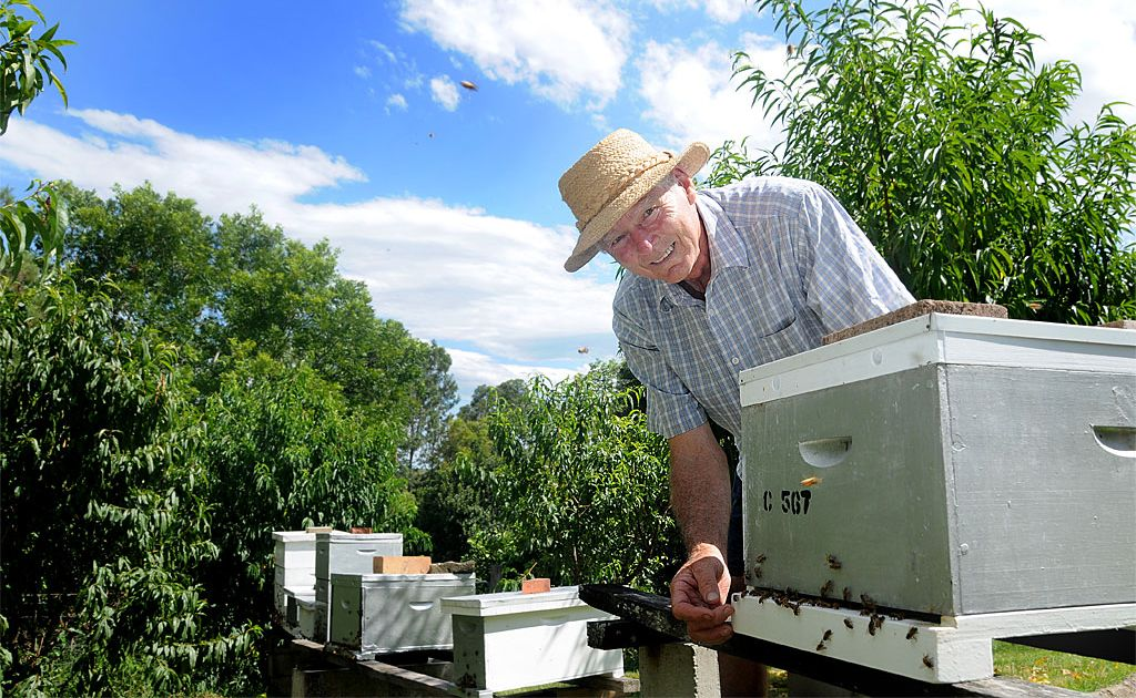 Beekeeper Athol Craig formed Valley Bees in response to diminishing bee populations in the region, with an average of 40 members at each meeting.