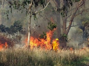 Hazard burn planned for area west of Peregian