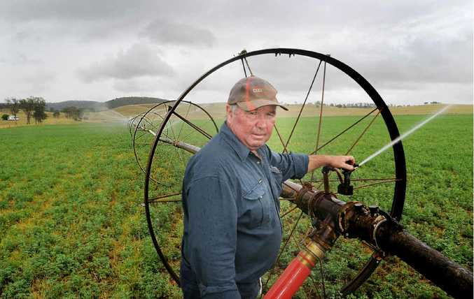 """""""We'd like some rain now,"""" said Tansey's Kel Stanton, whose family operated mixed-farming business is still recovering from last year's floods. He says improved subsoil moisture from the floods gave him a good barley fodder crop, but 2011 turned into a dry year after January."""