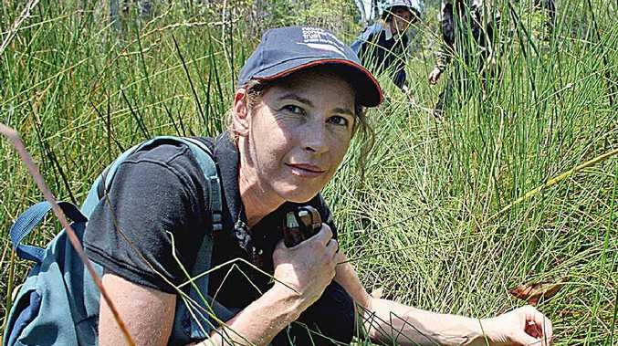 Nature Conservation Trust ecologist Georgia Beyer looks at a rare plant species, found on the Hawley property.