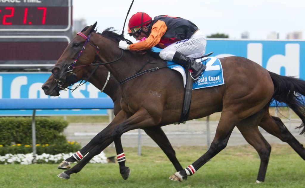 Former Raheen Stud horse Punch On won the Magic Millions race.