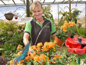Create a garden showpiece