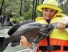 Ben Barker of Andergrove holds a nice sooty grunter taken from Teemburra Dam.