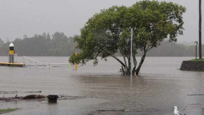Bradman Avenue, Maroochydore is under constant watch for flooding. Photo: Ian Ward