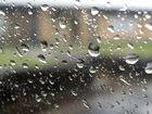 Did you get a teeny tiny bit of rain last night?