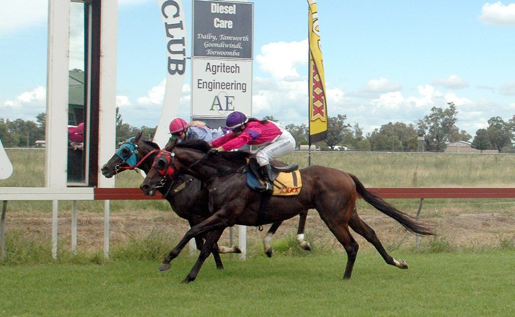 Visiting trainers, jockeys and supporters have hailed the organisers of the Goondiwindi Race Club Australia Day meet.