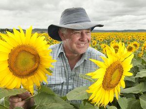 Region's best crops protected