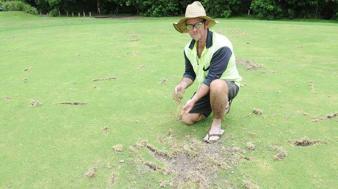 Gympie Pines Golf Course greenkeeper Jon Love is sick and tired of having to repair the golf course because of vandalism.