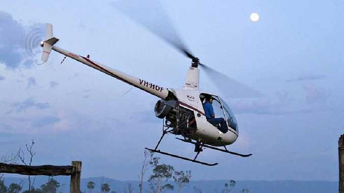 Professional shooters bagged 247 pigs while hovering over the Rocky Dam Creek catchment area in this chopper.