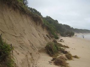 Living on the edge at Sawtell