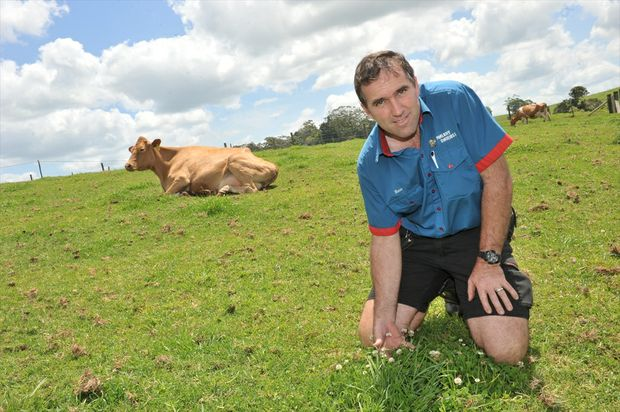 Maleny Dairies owner Ross Hopper.