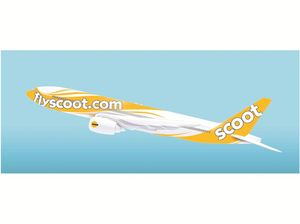New Singapore airline to scoot in