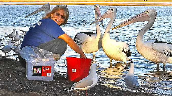 Marny Bonner is leaving Australian Seabird Rescue after 19 years.