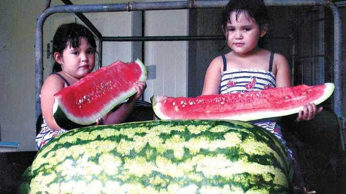 The Pullen twins sample a slice of blue rhind melon, which weighed in at 41kg – close to a record for that variety. The Carolina cross in front tipped the scales at 65kg, some 83cm long with a girth of 153cm – the biggest grown yet by the girls' father Bud Pullen of Nahrunda. The seeds for this melon came from the world record holding melon of 133kg, grown by Lloyd Bright, of Hope, USA.