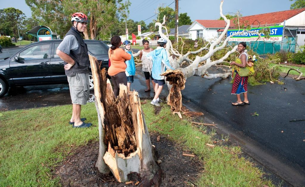 Coffs Harbour City Council has been awarded State Government funds to help pay for storm and flood repairs dating back to last year.