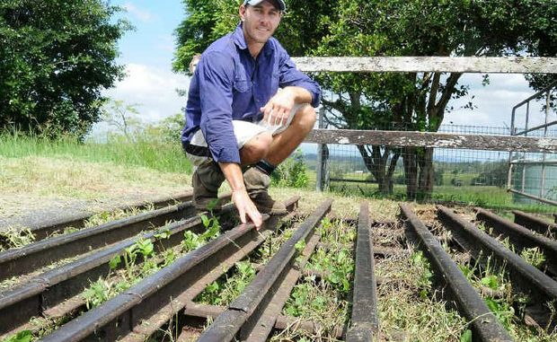 Andrew Haack with the 80-year-old grid preventing his few hundred droughtmaster cattle getting on to the Bruce Highway. Gympie Regional Council has elected to keep insurance cover the same, resisting advice to double it.