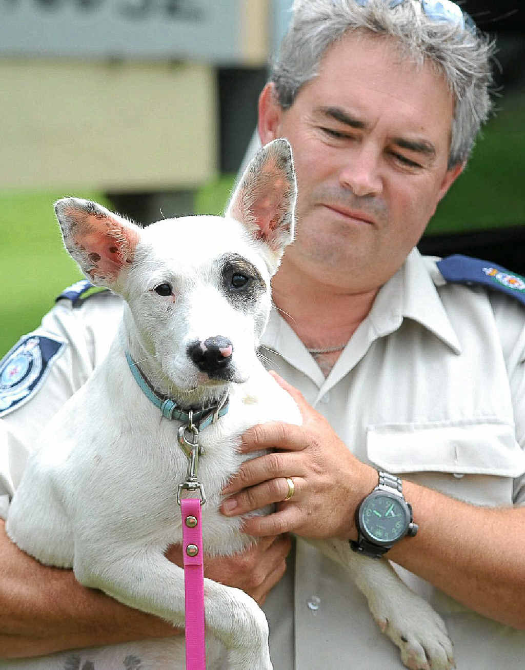 RSPCA regional inspector Alistair Hills and the puppy Roxy.