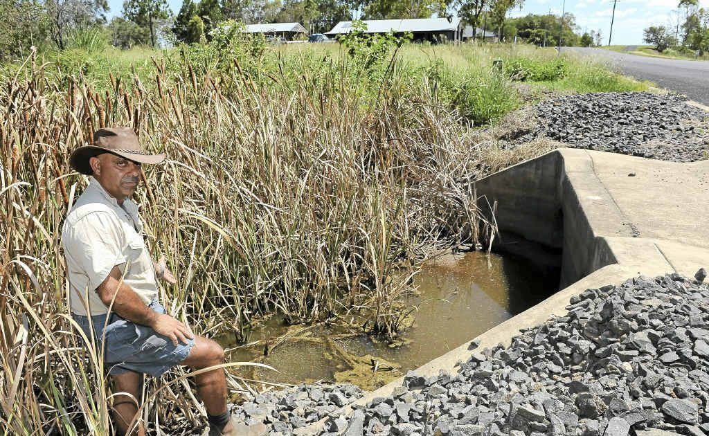 Moore Park Beach man Larry Borg at an area of the Moore Park drain on Palm View Dr.