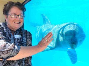 Funding serves a porpoise