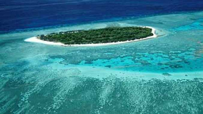 Lady Musgrave island is part of the Great Barrier reefs Capricorn Bunker group of islands.