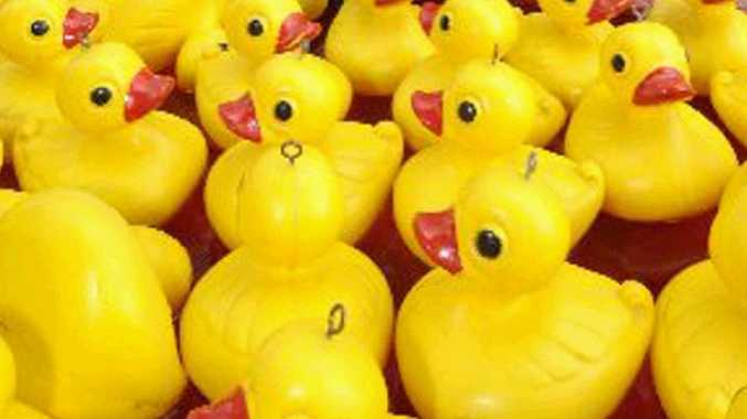 The Boofhead says getting a duck in cricket isn't all it is quacked up to be.