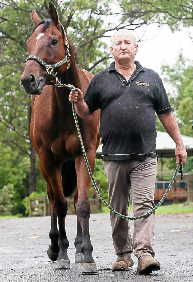 Dennis Heinemann has found the best in Sinister Prince, who has won all his four starts for the trainer.