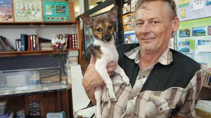 Maryborough store owner Mark Crossley has been taking his dog Bonsai to work for the past year.