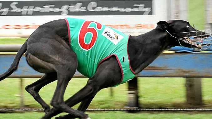 City Go Getta rounded out a double for trainers Peter and Helen Simpson.