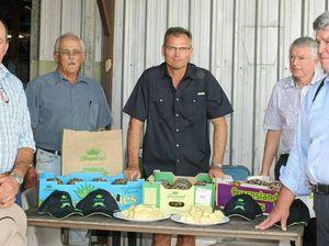 Imported pineapples spike debate