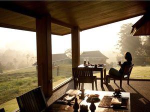 Yoga retreats in ancient rainforest