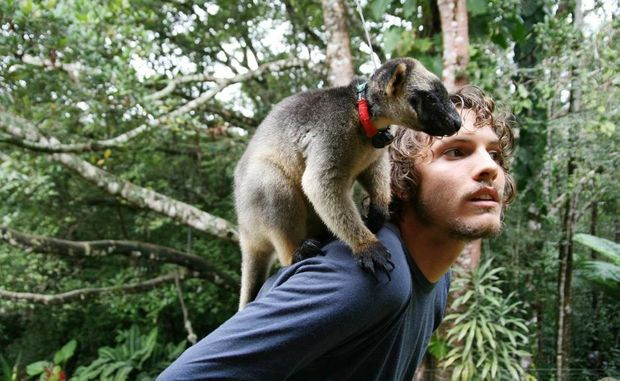 Paul Daley with a tree kangaroo in Northern Queensland.