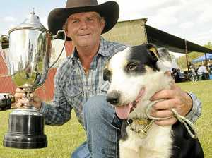 Pete paws in a futurity cup win