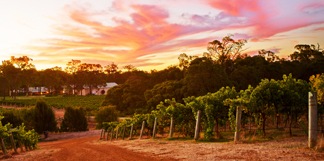 The Clairault winery in Margaret River.