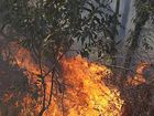 Staff from the Northern Rivers region of NSW National Parks and Wildlife Service will be doing training this weekend to prepare for bushfire season.