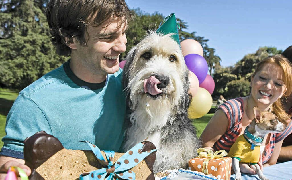 Australian pet owners are going to extra effort to treat their pets as part of the family.