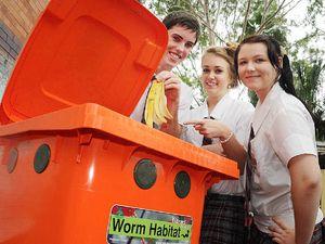 Worm farm a hit