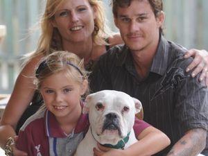 Fake ad lands dog-napper in court