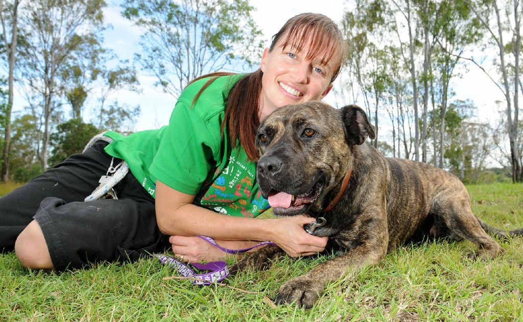 RSPCA worker Vanessa Richardson with Tia the bull mastif who is excited about the Million Paws Walk.