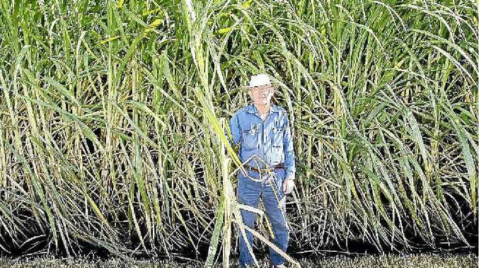 Sugarcane farmer John Sykes may have to pay more for research and development if a proposed reorganisation of the industry becomes a reality.