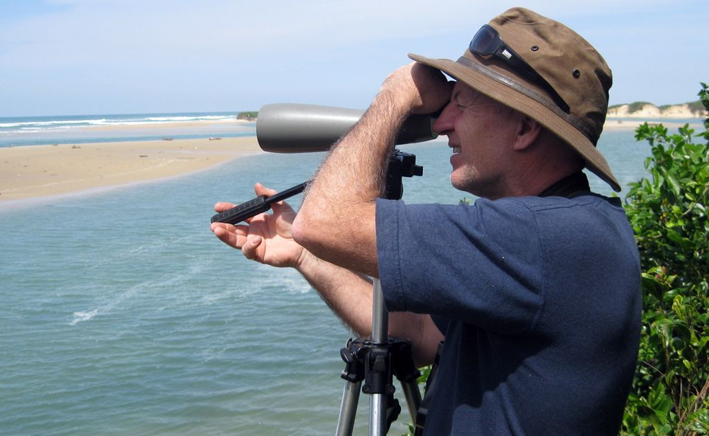 BirdLife Northern NSW convener Peter Higgins observes little terns in the local area.