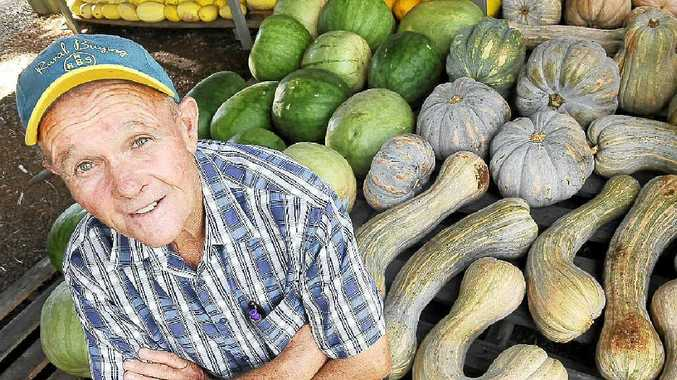 Richmond Hill resident Arthur Johns, manager of Northern District Exhibit, pictured with a selection of his homegrown sweet grey pumpkins, spaghetti marrows, pine melons and stock gramma.