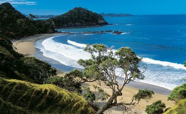 Beaches like Sandy Bay in Tutukaka are beautiful in any weather.