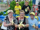 Coffs Harbour's favourite yellow fellow is back on top at the Show.