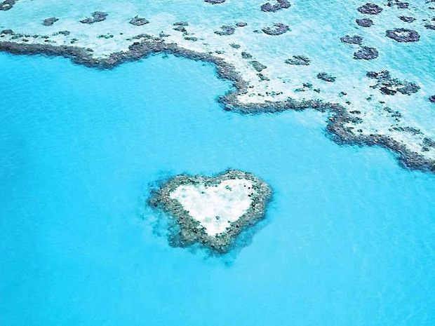 Heart Reef in the Whitsundays.