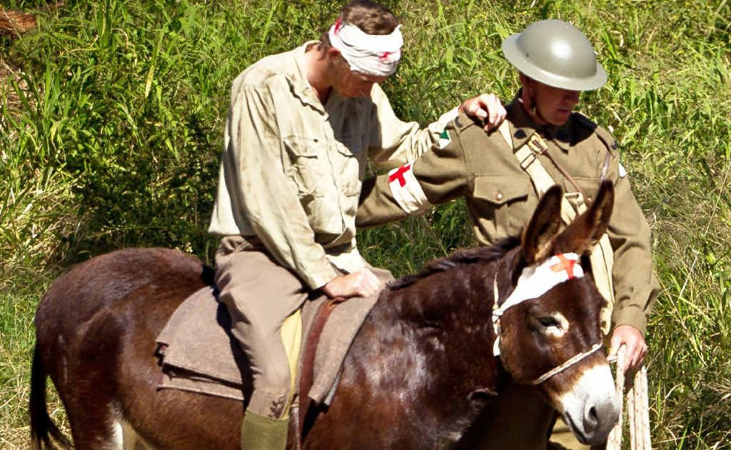 A re-enactment of Jack Simpson and his donkey will feature at the land and air spectacular this weekend.